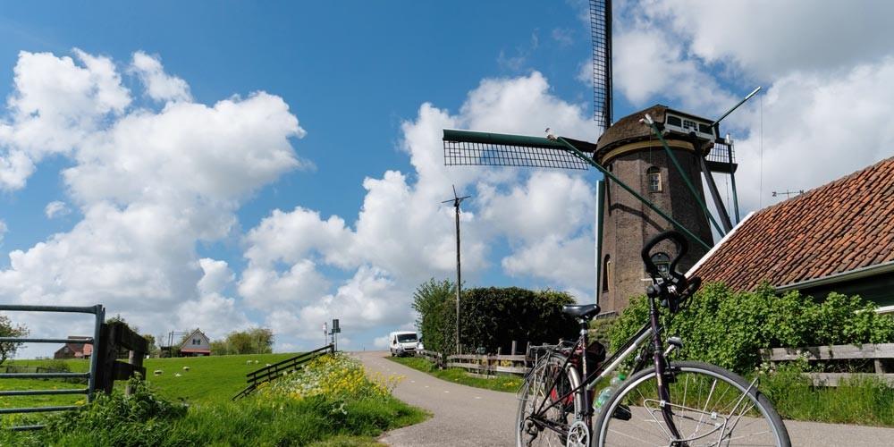 Tulip Tour Holland