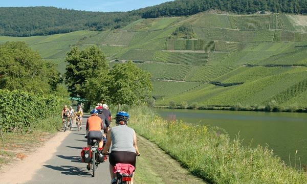 cycle tours along the Rhine